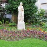 Voltaire, in garden near our apt.